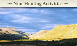 Non Hunting Activities