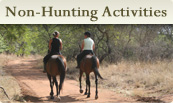 Non-hunting activities